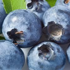 biberry2